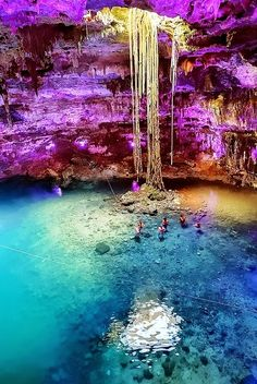 Cenote Samula, Dzitnup, Yucatan, Mexico. Looks very similar to the one we swam in... Not 100% sure