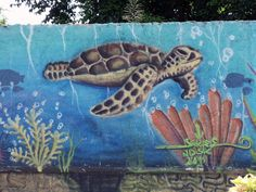 Part of a much larger section of wall art.  This is on the main oceanfront street (Melgar) near Mega grocery store in Cozumel, Mexico.