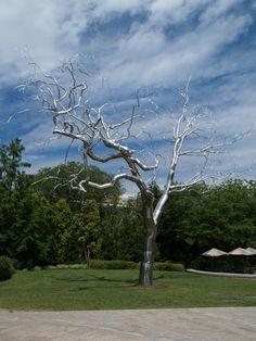 Washington, DC: National Gallery of Art Sculpture Garden /Graft (2008-2009, sculptor Roxy Paine)