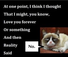 """Sarah Rodriguez pinned that she heard Grumpy Cat saying, """"no"""" at the end of this quote. Couldn't resist..."""