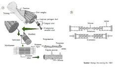 Floor Plans, Diagram, Kpop