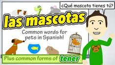 Learn words for different Pets in Spanish !