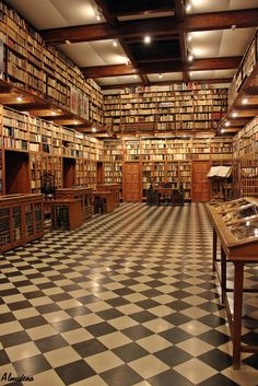 Library at Peralada Castle, Catalonia, Spain by Almukkk