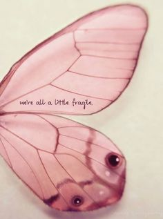 We are all a little fragile ( or a lot!) - please be kind...