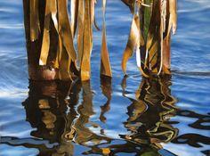 Julie Freeman recent pastel work - Julie freeman pastel artist