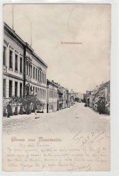 Alte AK Gruss aus Neustrelitz Schlossstrasse