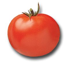 Heirloom Tomato Seeds, Tomatoes, Non-GMO, Untreated, Organic Seed – Sandia Seed Company Heirloom Tomato Seeds, Heirloom Tomatoes, Potted Fruit Trees, Raised Garden Beds, Raised Beds, Seed Catalogs, Organic Seeds, Chicken Eggs, Growing Vegetables