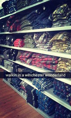 winchester wonderland