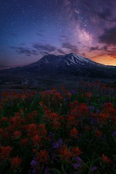 Mount St. Helens