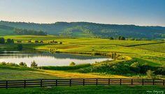 Charlottsville Virginia