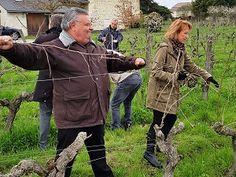 Le tirage des bois - Journée Découverte au Château de la Bonnelière #GourmetOdyssey