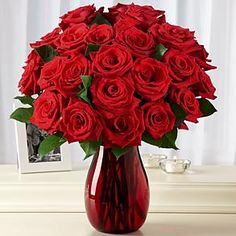Red Roses - great display