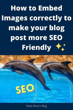 How to Embed Images correctly to make your blog post more SEO Friendly and 5 more Things I Had to Learn to Make a Blog Post SEO Friendly