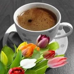 Buenos días i love coffee, coffee milk, coffee break, morning coffee, coffee Coffee Gif, Coffee Talk, I Love Coffee, Coffee Break, Coffee Drinks, Coffee Cups, Hersheys, Godiva Chocolatier, Share Pictures