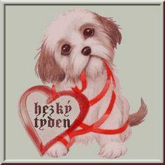 Love Is Sweet, Teddy Bear, Motto, Teddy Bears, Mottos