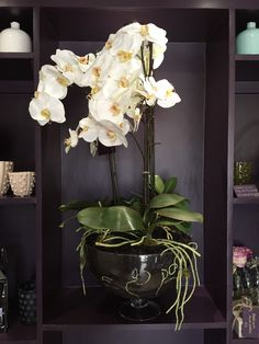 Elegant large faux white orchid in a black pot would look stunning in any home White Orchids, Faux Flowers, Looking Stunning, Florals, Seasons, Elegant, Plants, Gifts, Black