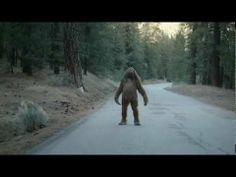 Hyundai Genesis; Holy crap, is that a Hyundai commercial featuring Sasquatch. Almost as prevalent as zombies in commercials, well, not really...