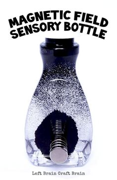 Make a magnetic field sensory bottle for some mesmerizing science fun.  Part 1 of a 5 week Summer STEAM Camp series.