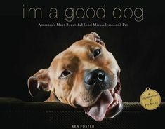 It's common knowledge that the noble, affectionate Pit Bull gets a bad rap. Author Ken Foster has written a tribute to these special dogs, complete with gorgeous photographic illustrations.