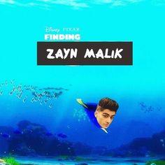finding zayn malik I WILL FIND HIM!
