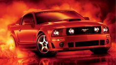 ... Mustang Wallpapers 6 ...