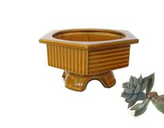 Succulent Planter Mid Century Modern Design by WeeLambieVintage