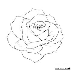 Rose Line Drawing Template - Drawing t . - Rose Line Drawing Template – Drawing t … – # - Flower Line Drawings, Flower Sketches, Pencil Art Drawings, Art Drawings Sketches, Easy Drawings, Rose Drawing Pencil, Tattoo Sketches, Cool Rose Drawings, Drawings To Trace