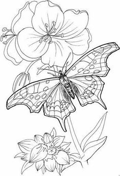 20 Free Printable Coloring Pages for Adults Only Flowers Free Printable Coloring Pages for Adults Only Flowers. 20 Free Printable Coloring Pages for Adults Only Flowers. Coloring Lmj Coloring Page Mandala Excelent Free Printable Free Printable Coloring Pages, Coloring Book Pages, Coloring Sheets, Kids Coloring, Butterfly Coloring Page, Line Drawing, Embroidery Patterns, Paper Embroidery, Flower Embroidery