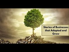 This video highlights the #success #stories of #businesses like UkuleleMate, Reid-Rodell, Kudo ,MovementX that have made successful #adaptations during these hard times and are being #rewarded with #positive #results.   For more Information Contact us - appointment@accucompenterprises.com  #COVID19 #pandemic #coronavirus #impact #smallbusiness #startups Business Video, Hard Times, Startups, How To Dry Basil, Highlights, Success, Herbs, Videos, Tough Times
