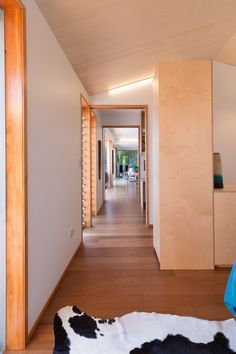 Ambience Wall & Ceiling Lining —Plytech Plywood Interior, Plywood Walls, Plywood Suppliers, Plasterboard, Stairs, Ceiling, House, Interiors, Google Search