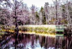 Old Santee Canal State Park, Berkeley County, SC