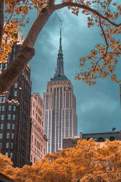 GREAT PIC OF THE EMPIRE STATE BUILDING FROM AFAR