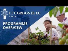 Beehives on Le Cordon Bleu Paris vegetable roof garden Le Cordon Bleu, Culinary Arts, Vegetable Garden, Paris, Vegetables, Kitchen, Veg Garden, Cuisine, Home Vegetable Garden