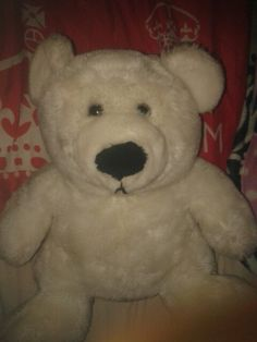 Cute teddy bear for kids under the age of six to sleep and cuddel with at night
