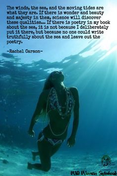 """""""The winds, the sea, and the moving tides are what they are. If there is wonder… Nature Words, Rachel Carson, Science Quotes, Ocean Quotes, Typography Quotes, People Photography, Mother Earth, Life Is Good, My Books"""