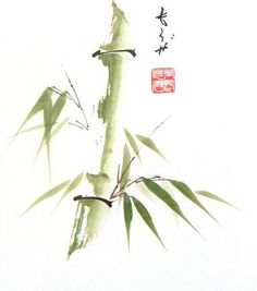 I am Italian and I have been teaching traditional Chinese painting for 25 years. I was involved into art because 30 years ago I started to practice Zen Japanese Ink Painting, Sumi E Painting, Japanese Watercolor, Chinese Painting, Chinese Art, Watercolor Art, Chinese Brush, Bamboo Drawing, Bamboo Art
