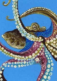 ACEO ATC Octopus Marine Fish Ocean Wildlife Art Original Painting-C. Smale #Realism