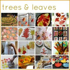 50 Autumn Play and Art Activities for Kids - The Imagination Tree