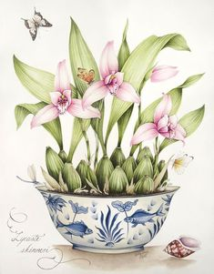 Original Painting by Kelly Higgs - Lycaste Orchid growing in a Blue and White Pot:
