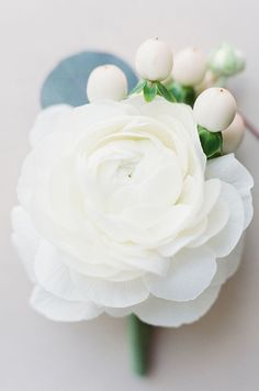 Ranunculus that's almost in full bloom makes for one elegant boutonniere.