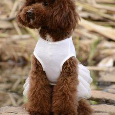Häät Koristelu koiran mekko Muoti valkoinen puuvilla mekot Bowknot ja Big Sun kukat S XXL pienille tai keskisuurille koiralle Teddy Bear, Teddy Bears