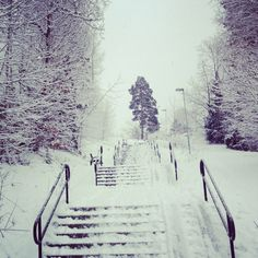 That is why I don't live there any more :) Sweden in the winter!
