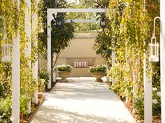 Garden Promenade: This outdoor space has the aesthetic of a rambling English garden presented in a modern, structured way with climbing roses growing over a series of five arbors. In true cottage garden style, the arbors have been interplanted with birch trees, ornamental pears and crape myrtles. Photography by Jason Busch.  From HGTV.com's Garden Galleries