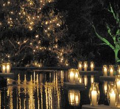 1000 Images About Top Places To See Christmas Lights On Pinterest Festival Of Light Kauai