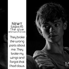 Newt, aaw newt I loved him ... One of my favorite characters ever ...