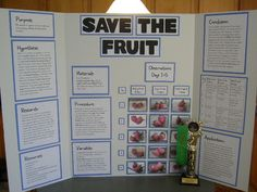 why does the moon glow science fair fair projects and nature science boards for 4 grade categories life science physical science earth and