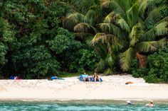 People from every part of the world are going to Fiji islands for their holiday. These islands offer exotic sightseeing for the tourists to enjoy and relax in the mesmerizing sights.  http://islandtravelrock.blogspot.sg/2013/09/louis-gerard-saliot-promoted-fiji.html