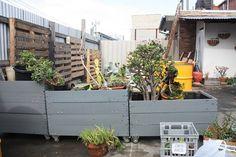 garden box + wheels