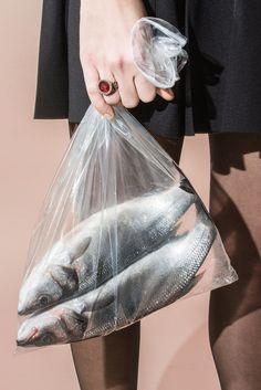 #editorial #fish
