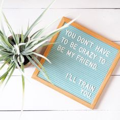 You Don't have to be crazy to be my friend, I'll train you. Letter board quote. #Regram via @letter_writes